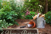 Anything to do with gardening & planting. / by Jenn Molver