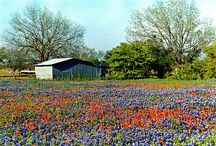 It's a Texas thang! / by Connie Thompson Perkins