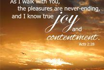 Is it possible to have true joy? / Seeking Joy
