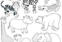 mš zoo