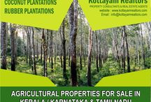 Kottyam Realtors / One of the leading Real Estate Agents and Property Consultants based in Kottayam, Kerala, India. Dealing with Residential Properties - Houses / Flats / Villas, Commercial Properties / Space, Agricultural Properties etc.