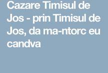 Cazare Timisul de Jos