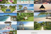 Destination Weddings and Honeymoons / We are a Certified Sandals Specialist Company. WeddingMoons Certified Specialist