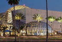 Top Orlando Museums / Planning a vacation to Orlando? Our insiders put together a list of top Orlando museums that you should consider adding to your itinerary.  Orlando is home to a thriving museum culture that offers a variety of specialties and topics worth exploring such as art, culture, architecture, history, and wildlife.