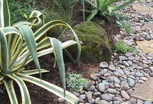 Landscape/Dry Creek Beds