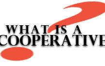 Agriculture Co-ops / Discover the cooperative difference. Genex is a member-owned cooperative guided by a board of 13 member-elected dairy and beef cattle producers who utilize the cooperative's products and services.