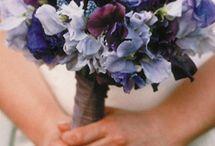 Amanda - Wedding Ideas