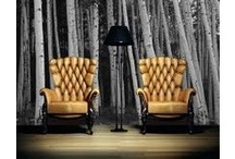 Furniture / by Maybelle Koh