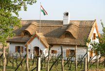 A magyar ház