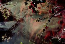 Artist - Margriet Smulders