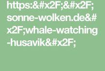Island/Whalewatching