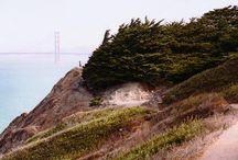 Our Little corner of San Francisco