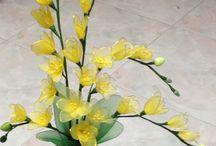 stocking flower 1