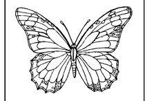 Vlinders / Voor bewerking op kaarten