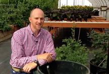 Videos / Agronomist Rich Affeldt answers common questions about using Cascade Minerals Remineralizing Soil Booster in your yard and garden.