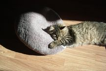 cats love wool caves, beds, houses....you name it ;) / all cats in cat caves, beds, houses... / by Kivikis cat
