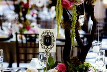 Wedding Ideas / Wedding Inspiration  / by Justine Del Gaudio