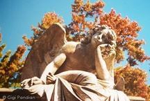 Cemetery Angels / Angels and other stone carvings at cemeteries.
