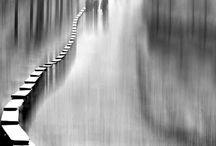 Monochrome / by John Ager