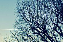 Mes photos ❤️
