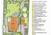blogs jardins