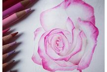 Drawings with flowers