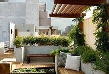Área e jardim