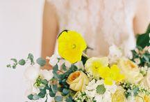 Jaunes // Yellow