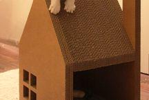 Casas de Gato