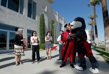 Timeout / Fresno State's mascot, Timeout, is a big hit with the fans! / by Fresno State
