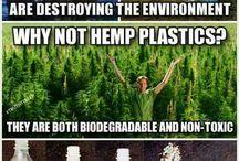 animal and environmental awareness