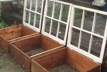 Giardinaggio / Tutto quello che riguarda il giardinaggio