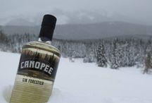 Boire local - alcools du Québec