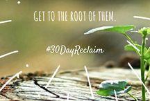 30 Day Reclaim