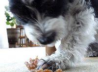 Dog Treats - Homemade