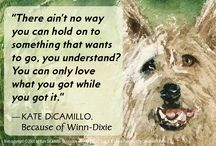 Kate DiCamillo Quotes / by Candlewick Classroom