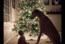 Nature / www.matka-polka.com #kids #dogs #nature #family #love