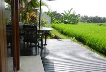 Bali Harmony Villas - Villa Asmara / Villa Asmara ... beautiful views of the endless rice fields, fantastic views of the mountains, a private meditation garden and gorgeous private decks!  http://baliharmonyvilla.com/