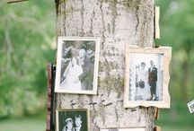 Wedding Decorations / Inspiring Wedding Decorations