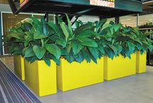 Rectangular Planters / Interior and Exterior Rectangular Planters and Troughs
