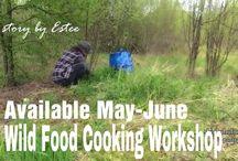 Wild Food retreats / Wild Food Workshop in Sweden