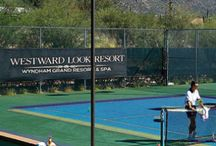 Tucson Resort Recreation / Whether your first love is Tennis, Horesback Riding, Hiking, Biking or Specialty Gardens, we've got it all at Westward Look