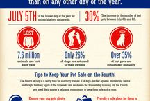 Pet-Safe Independence Day / Follow our board for tips on how to keep your pets safe this 4th of July.