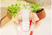 Cute Ceramic / For plant