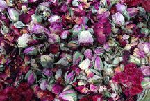 Summer Scents     Potpourri / All natural potpourri that is a perfect scent for the summer!