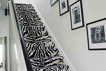 Zebra**