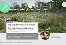 """Stedelijke natuur/Greenlabel / NL Greenlabel werkt samen met de VNG, Platform 31, De Vlinderstichting en het Ministerie van Economische Zaken aan de Green Deal """"Nieuwe stedelijke natuur"""".  Het voornemen is om deze deal in de zomer van 2015 te sluiten.  De samenwerkingspartners  hebben als ambitie duurzame stedelijke natuur te creëren met meerwaarde voor de biodiversiteit. Dit project gaat over het inrichten van 1000 hectare stedelijke natuur op een duurzame en verantwoorde manier."""