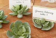 Place Card Holders and Frames / Complete your wedding reception decoration with cute wedding place card holders.