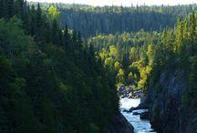 Pukaskwa Coastal Trail / Hiking Pukaskwa's Coastal trail