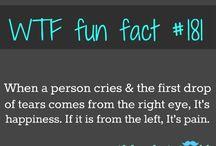 funfact